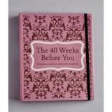 Nursing Mom THE 40 WEEKS BEFORE YOU
